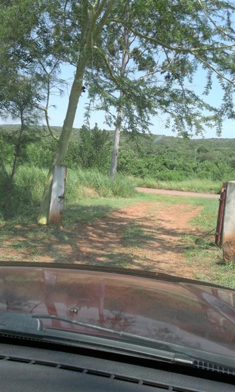 Land  - Namaacha [3]