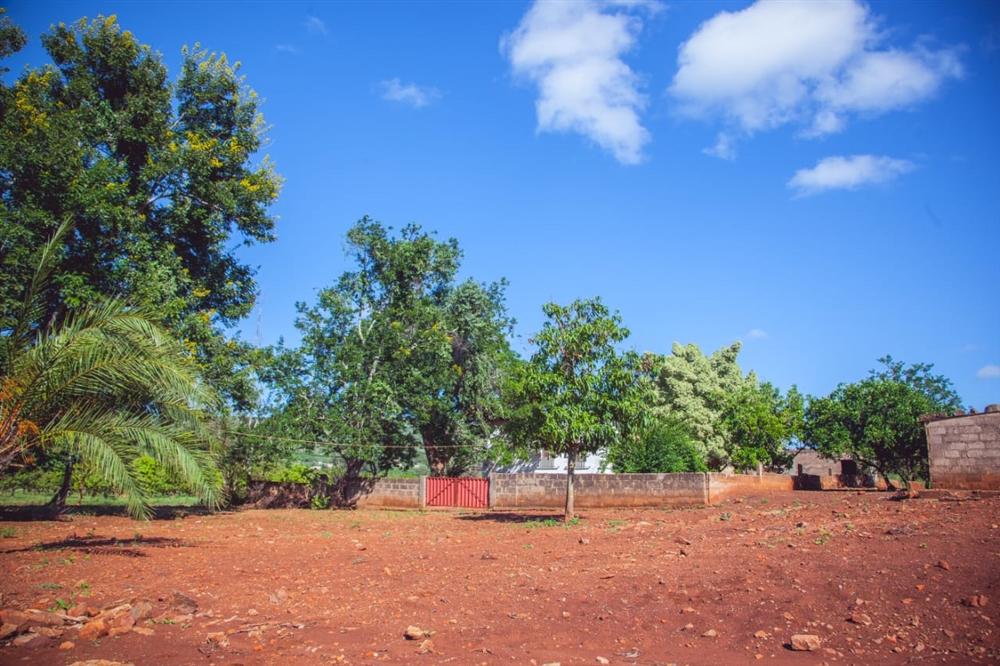 Land  - Namaacha [10]