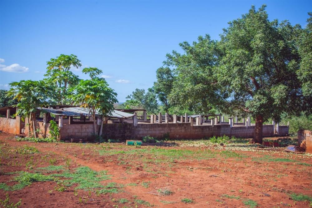 Land  - Namaacha [12]