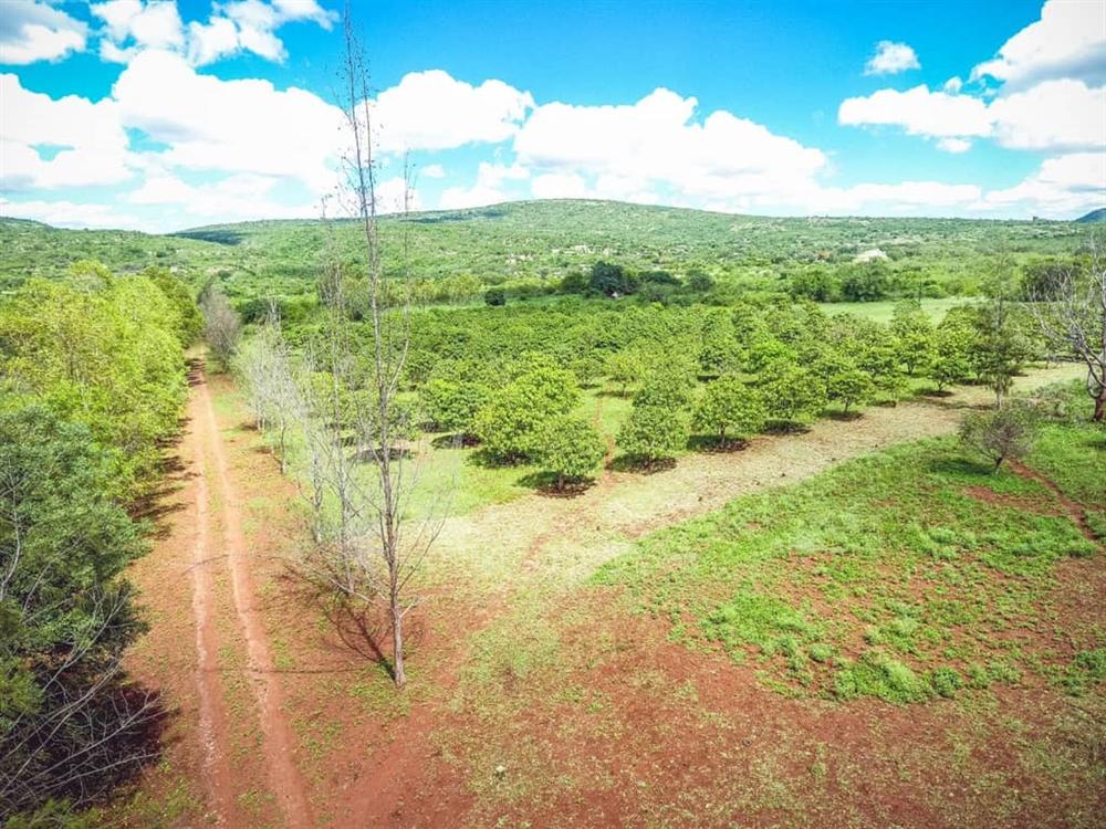 Land  - Namaacha [13]